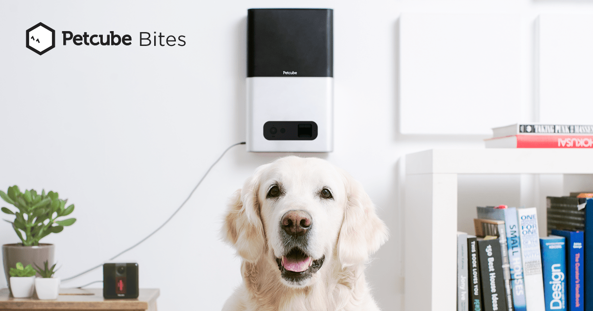 petcube bites hd pet treat camera that monitors and dispenses treats