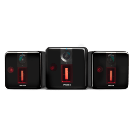Petcube Play 3-Pack Carbon Black